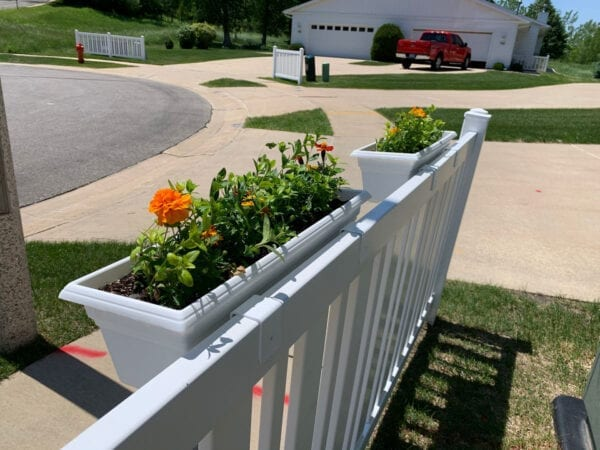 Flower Boxes on Yard Fence